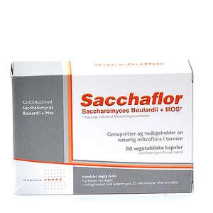 Sacchaflor